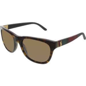 Polo Women's  PH4091-550273-55 Brown Square Sunglasses