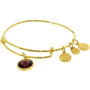 Alex And Ani Women's Crystal Birthstone Feb Amethyst Yellow Gold Cubic-Zirconia Charm Bracelet