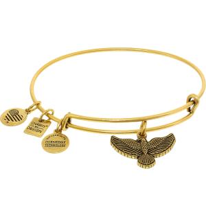 Alex And Ani Women's Spirit Of The Eagle Rafaelian Gold Charm Bracelet
