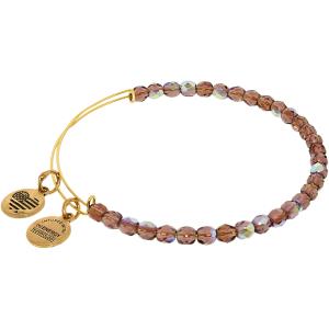 Alex And Ani Women's Power Of Positivity Beaded Amethyst Yellow Gold Charm Bracelet